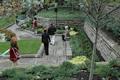 Cultural Gardens Dedication image 19