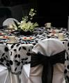 Bridal Fair image 8